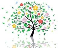 arbre de fleur Photographie stock