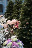 Arbre de fond de Noël avec le décor et les fleurs Images stock
