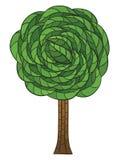 Arbre de griffonnage avec les feuilles vertes Photographie stock