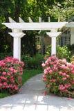 Arbre de jardin et fleurs roses. Image libre de droits