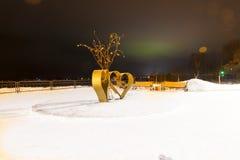 arbre de l'amour et des lumières du nord dans Belomorsk, Russie Photographie stock libre de droits