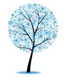 Arbre de l'hiver Images libres de droits