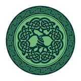 Arbre de la vie celtique Images libres de droits