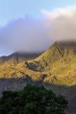 Arbre de lumière du soleil sur un intervalle de montagne Images libres de droits
