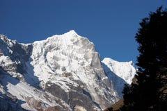 arbre de neige du Népal de montagne de l'Himalaya de falaise Photos libres de droits