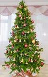 Arbre de Noël à l'intérieur Photographie stock