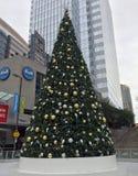 Arbre de Noël à Phoenix du centre, AZ Images stock