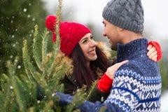 Arbre de Noël de achat de jeunes couples image libre de droits
