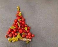 Arbre de Noël avec des baies sur le gris Photo libre de droits