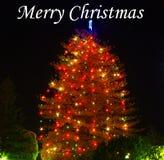 Arbre de Noël avec des lumières Image stock