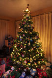 Arbre de Noël avec des lumières Photo libre de droits