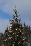 Arbre de Noël avec des lumières en hiver Photographie stock