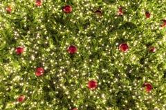 Arbre de Noël avec l'éclairage Images libres de droits