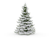 Arbre de Noël avec la neige Photos libres de droits