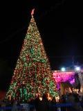 Arbre de Noël, Betlehem, Palestine Images libres de droits