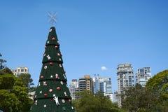 Arbre de Noël chez Ibirapuera dans la ville de Sao Paulo Images stock