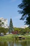Arbre de Noël chez Ibirapuera dans la ville de Sao Paulo Photos stock