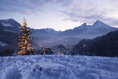 Arbre de Noël chez Lockstein Images libres de droits
