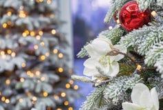 arbre de Noël couvert de neige avec des décorations sur le fond avec le bokeh photos stock