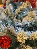 Arbre de Noël couvert de neige décorée des boules éclatantes rouges et des lumières rougeoyantes photographie stock