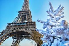 Arbre de Noël couvert de neige près de Tour Eiffel à Paris image stock