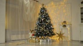 Arbre de Noël décoré clips vidéos