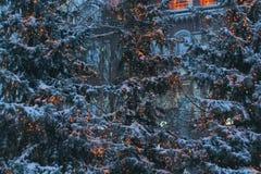 Arbre de Noël décoré dans la rue, la fille près de l'arbre de Noël photographie stock libre de droits