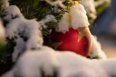 Arbre de Noël décoré des lumières de guirlande et des boules rouges image stock