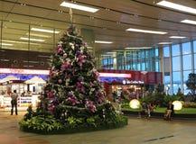 Arbre de Noël dans l'aéroport de Changi Image libre de droits