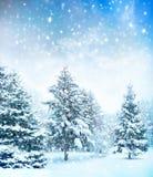 Arbre de Noël dans la neige Photo libre de droits