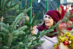 Arbre de Noël de achat de femme photos stock