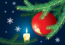 arbre de Noël de branchement Photo libre de droits
