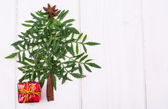 Arbre de Noël de Minimalistic fait en usine de jardin sur les conseils blancs Images libres de droits