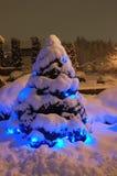 Arbre de Noël de neige Photos libres de droits
