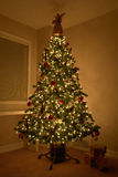 Arbre de Noël de Noël photos libres de droits