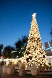 Arbre de Noël Defocused avec la lumière de bokeh Photos stock