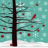 Arbre de Noël et fond cardinal rouge Images stock