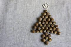 Arbre de Noël fait de noisettes Images libres de droits