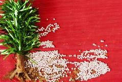 Arbre de Noël fait main avec les grains artificiels de feuilles, de cannelle et de tapioca photo stock
