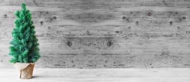 Arbre de Noël, Gray Wooden Background, l'espace de copie photographie stock