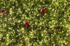Arbre de Noël la nuit Image stock