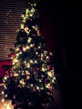 Arbre de Noël la nuit Image libre de droits