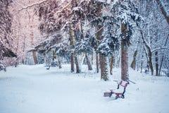 Arbre de Noël magique de vue de paysage de conte de fées fantastique Photographie stock