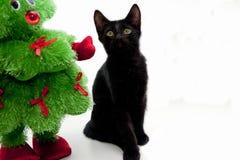 Arbre de Noël noir de chaton et de jouet Image libre de droits