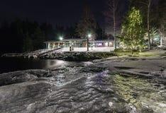 Arbre de Noël par le lac Photographie stock libre de droits
