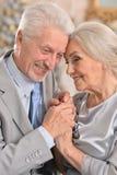 Arbre de Noël plus âgé d'oreille de couples Photographie stock libre de droits