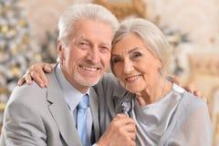 Arbre de Noël plus âgé d'oreille de couples Photo libre de droits