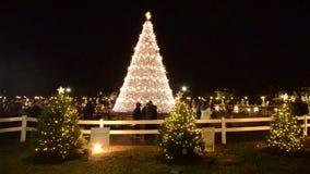Arbre de Noël près du Washington DC de la Maison Blanche banque de vidéos
