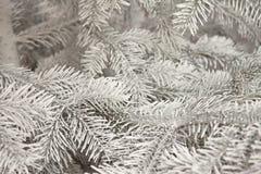 Arbre de Noël sur la neige Photos libres de droits