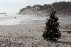 Arbre de Noël sur la plage photo stock